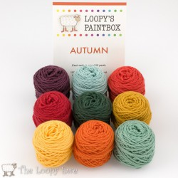 Autumn Paintbox The Loopy Ewe